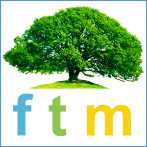 Why the Name: Family Tree Mediation?